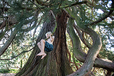 Boy climbing a tree - p1354m2285992 by Kaiser