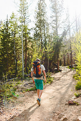 USA, Colorado, Rocky Mountain National Park, Young man hiking in forest - p352m1350129 by Eija Huhtikorpi