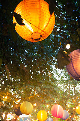 Tree Paper Lanterns - p1248m1169589 by miguel sobreira