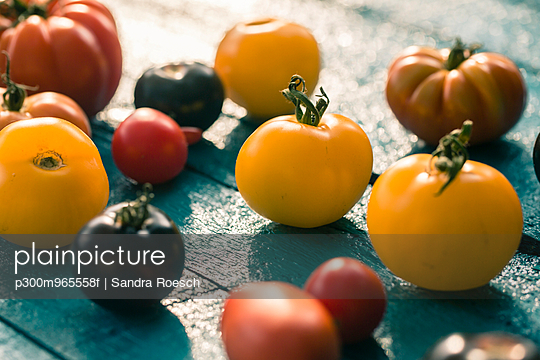 Heirloom tomatoes on blue wood - p300m965558f by Sandra Rösch