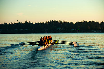 Team rowing boat in bay - p555m1478276 by Pete Saloutos