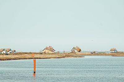 Thatched-roof houses on the coast, Graswarder-Heiligenhafen - p986m2288681 by Friedrich Kayser