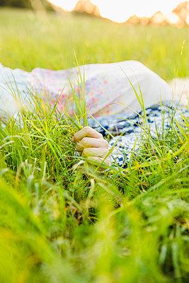 In der Natur - p904m1170867 von Stefanie Päffgen