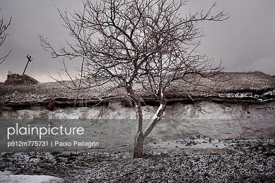 p912m775731 von Paolo Pellegrin