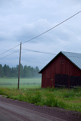 Finland, Ita-Uusimaa, Lapinjarvi, Barn in meadow on foggy day - p352m1100803f by Karin Smeds