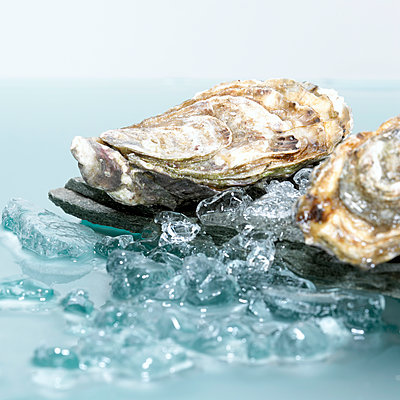 Closed oysters on crushed ice, close-up - p300m2207188 by Christian Kargl
