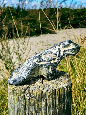 Stone dinosaur - p382m2283961 by Anna Matzen