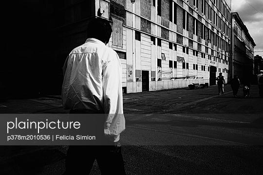 p378m2010536 von Felicia Simion