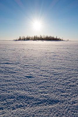 Auf dem zugefrorenen Bottnischen Meerbusen - p1079m1182235 von Ulrich Mertens