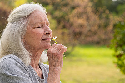 Senior woman smelling flower in garden - p623m2165202 by Frederic Cirou