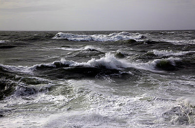 Wild winter seas off Mort Point - p8714131 by David Pickford