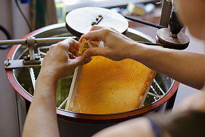 Cropped image of woman holding honeycomb in machinery at industry - p301m1070133f by Halfdark