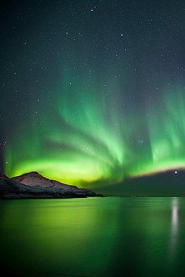 The Aurora Borealis spectacular Northern Lights and Venus star at Grotfjord, Kvaloya island, Tromso in the Arctic Circle, Northern Norway - p871m895831 by Tim Graham