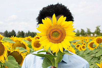 Man with a sunflower in front of his face - p975m2203344 by Hayden Verry