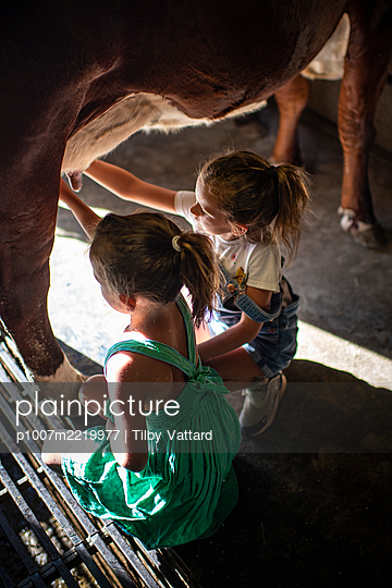 France, Two girls in a cow stable - p1007m2219977 by Tilby Vattard
