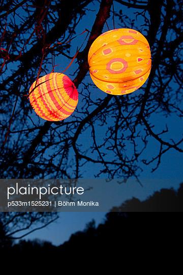 Leuchtende Lampions im Apfelbaum - p533m1525231 von Böhm Monika