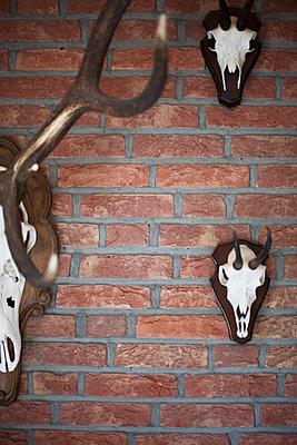 Wall Decoration - p1036m763186 by Anna-Lisa Mauriello