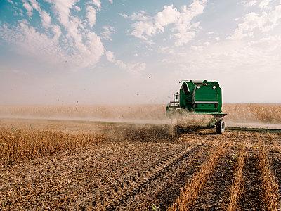 Serbia, Vojvodina, Combine harvester in soybean field - p300m2012905 von oticki