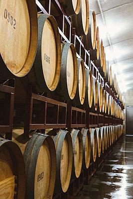 Wine barrels aging - p555m1415542 by Inti St Clair