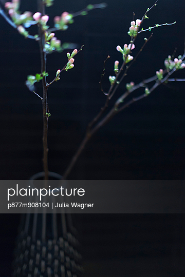 Twig in a vase - p877m908104 by Julia Wagner