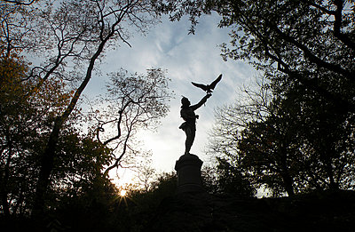 The Falconer Statue in Central Park New York - p1072m857500 by Tania Polley