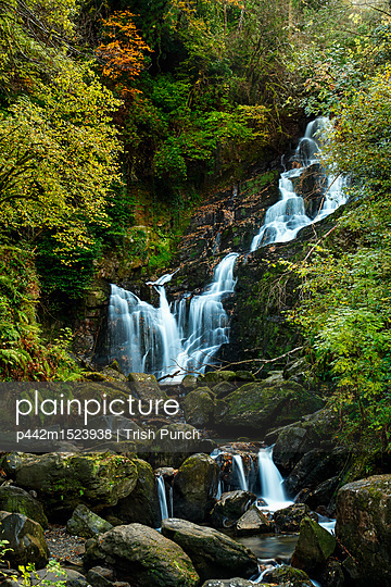 plainpicture | Photo library for authentic images - plainpicture p442m1523938 - Torc waterfall in Killarne... - plainpicture/Design Pics/Trish Punch