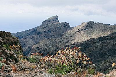 Mountains of La Gomera - p1683m2272738 by Luisa Zanzani
