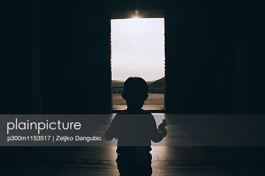 p300m1153517 von Zeljko Dangubic