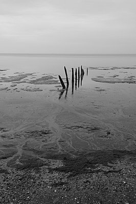 Decaying groynes and the sea - p1181m982959 by Kelly Hill