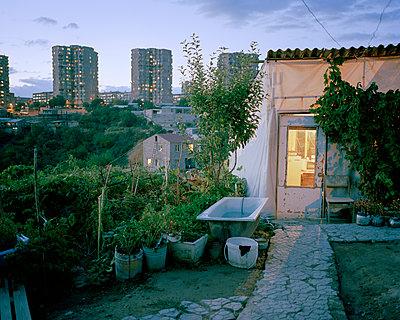 Städtische Landwirtschaft - p1205m1464001 von Jan Brykczynski