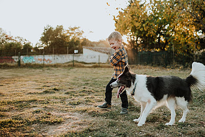 Happy boy playing with dog on playground during sunset - p300m2240635 by Gala Martínez López