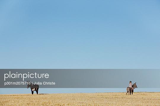 p301m2075716 von Julia Christe