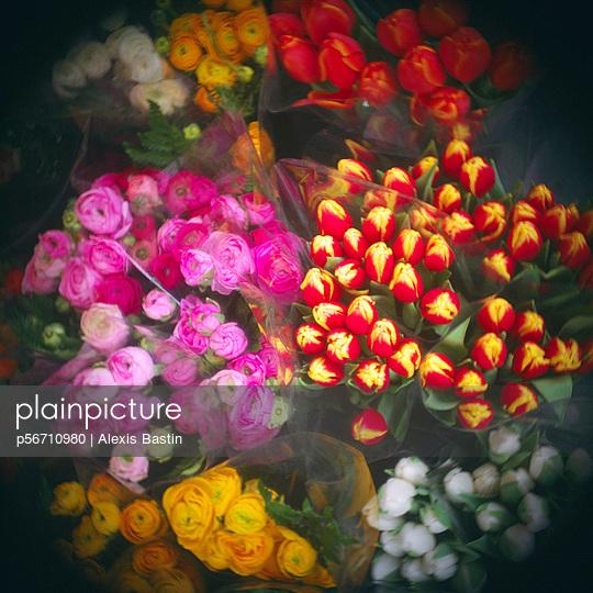 Blumenverkauf - p56710980 von Alexis Bastin