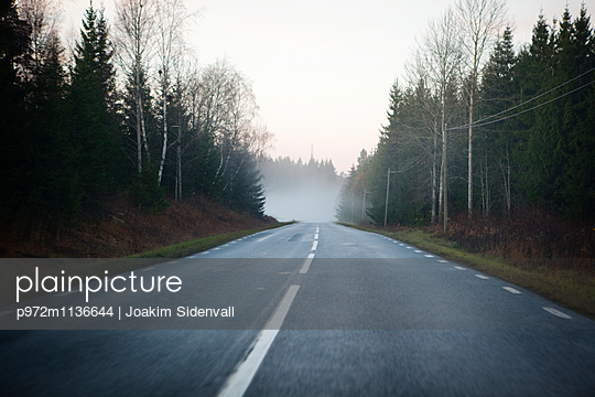 Street in autumn - p972m1136644 by Joakim Sidenvall