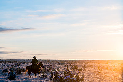 Cold Morning on the Ranch - p343m1217836 by Matthew DeLorme