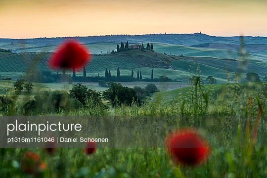 Landschaft bei San Quirico d`Orcia, Val d`Orcia, Provinz Siena, Toskana, Italien, UNESCO Welterbe - p1316m1161046 von Daniel Schoenen