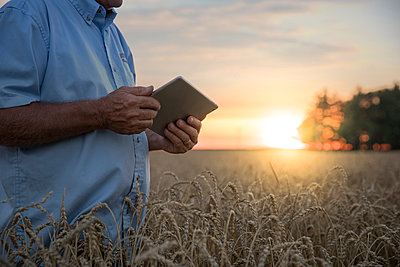 Caucasian man using digital tablet in field of wheat - p555m1522993 by John Fedele