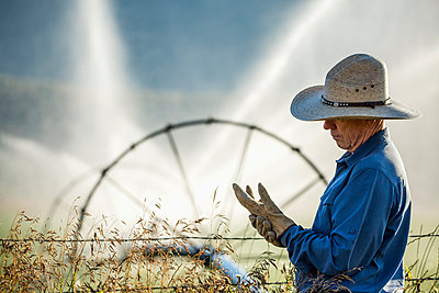 Caucasian farmer near barbed wire fence checking glove - p555m1303709 by Steve Smith