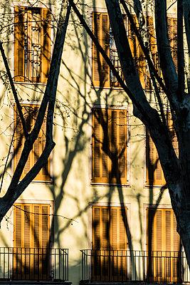 Fensterfront - p488m1332473 von Bias
