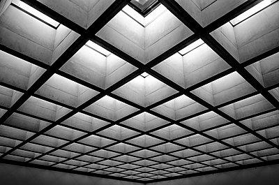 Skylight - p1523m2278203 by Nic Fey