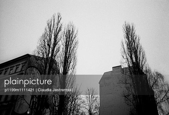 Street corner - p1199m1111421 by Claudia Jestremski
