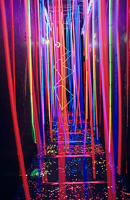 Neon light garden - p0451043 by Jasmin Sander