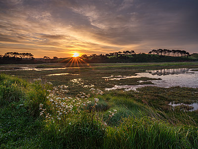 Sunrise across the salt marshes of the River Otter at Budleigh Salterton, Devon, England, United Kingdom - p871m2113903 by Baxter Bradford