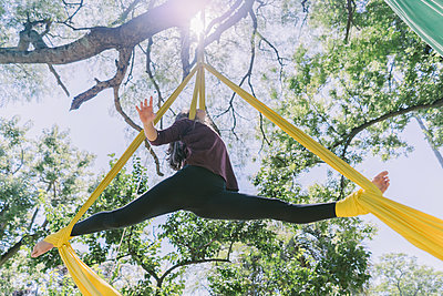 Aerial Silks Performer Hanging On A Tree - p1166m2106798 by Cavan Images