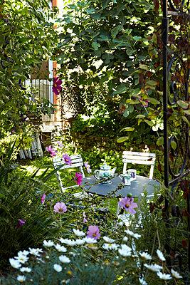 Back garden - p349m786721 by Alun Callender