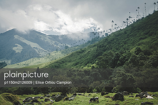 Mountain landscape with dairy pasture - p1150m2126009 by Elise Ortiou Campion