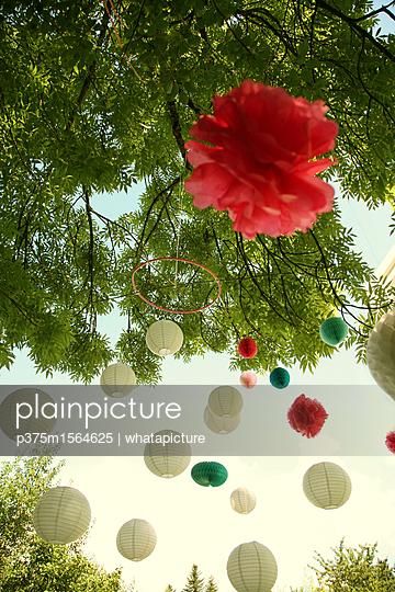 Lampions am Baum - p375m1564625 von whatapicture