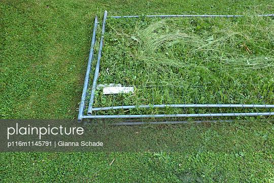 Rasen über die Sache wachsen lassen - p116m1145791 von Gianna Schade