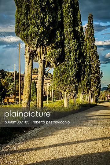 Classical tuscan road near Cosona - p968m987185 by roberto pastrovicchio