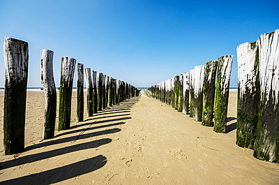 Netherlands, Zeeland, Walcheren, Domburg, Beach with breakwaters - p300m950811f by Thomas Haupt